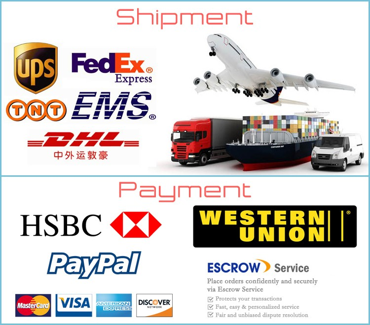 payment and shipment2
