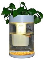 New design DC-12V mini acrylic white cylindrical best selling aquarium fish tank