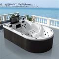 monalisa acrílico bañeras de lujo para adultos bañera portátil con tv