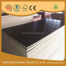 high quality plywood species