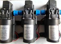DC12V Agriculture sprayer Self Priming high pressure water pump 24v dc motor