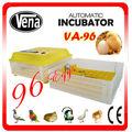 Precio Hottest automática incubadora de huevos de ganso en venta solar pollo huevo incubadora para la venta de VA-96