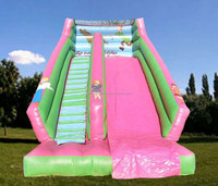 children Inflatable scooby doo slides