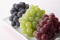 BV certificated factory supply high purity and lower price grape Seed P.E proanthocyanidins