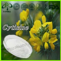Pure Natural cytisine/sparteine/gorse extract