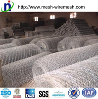 Chicken Wire Mesh/rabit fence/animal fence(factory price)