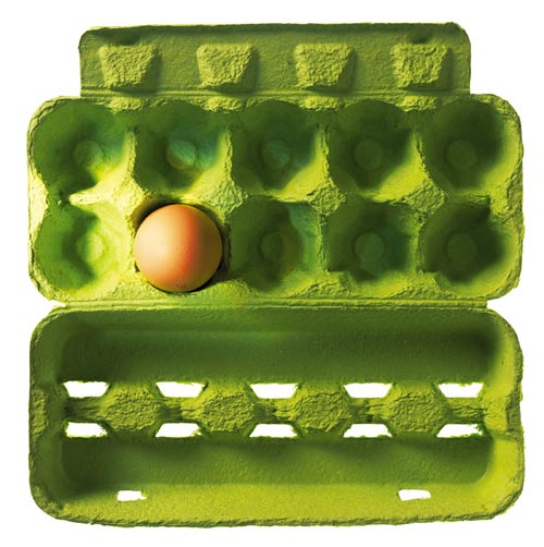 Egg paper tray buy paper tray tray paper tray product on for How to make paper egg trays
