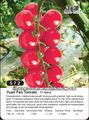 color rojo cereza de semillas de tomate