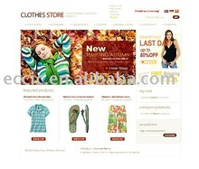 Web Designer, Website Design, Software Design, Clothes Website Design Service(Rent or Buyout)