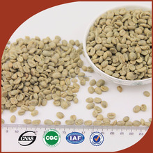 Supply bulk coffee green bean, green coffee bean export, manufacturer of all variety beans