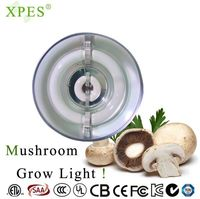 xpes Hot Sale Low Price High Power 300w Grow Lights LED