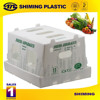 plastic box for vegetables, plastic folding box,collapsible plastic box