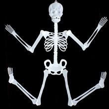 party accessory glow in dark halloween props skeleton