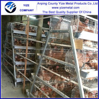 china manufacturer cage for layer birds/128 laying hen A type chicken layer cage