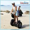 2015 Most Popular Self Balancing China Segways Scooter 2 Wheel Chariot