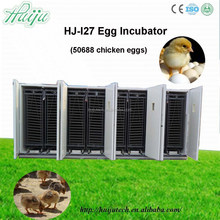 egg incubator for sale in india/advantageous 50688 eggs incubator with the most competitive price