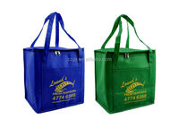 Non-woven Warm or Cool insulated picnic bag