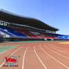 IAAF Professional Synthetic Rubber Flooring for Running Tracks