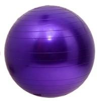 Exercise Equipment Custom Kids Play Ball 55CM Yoga Ball Gym Ball