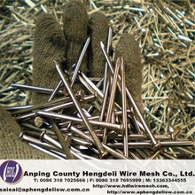 High quality common iron wire nail
