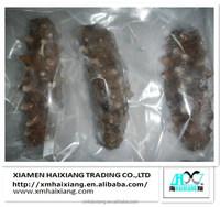 Export fresh frozen sea cucumber