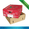 Recyclable Corrugated Fruit Packaging Box with Good Quality
