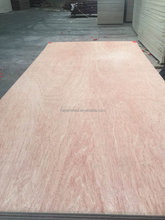 Hot Sale First Class Grade 4mm Bintangor Plywood For Furniture with Low Price
