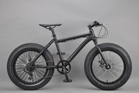 20 inch Fat bike suzuki racing bikes