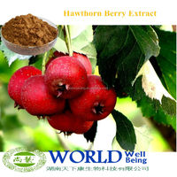 100% Natural 2%-90% Flavone Hawthorn Berry Extract/Hawthorn Extract/Hawthorn Leaf Extract