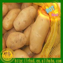 chinese fresh potatoes in price