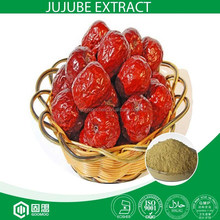 Water soluble Jujube Extract with ISO Standard