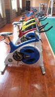 Commercial Indoor Swing Spin Bike /Exercise Bike machine/Cardio Machine