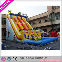 Cheap Giant Commercial Water Slide for Adults