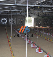 poultry farm equipment chicken shed layer cage with auto drinker and feeder