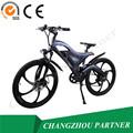 Eco- ambiente chopper moto eléctrica