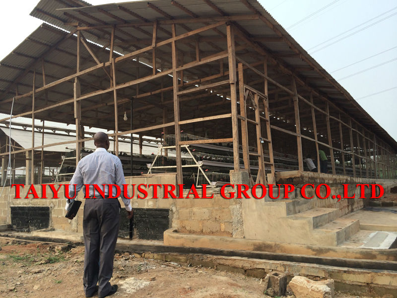 Poultry Farm Design Layout For Chicken House Buy Poultry