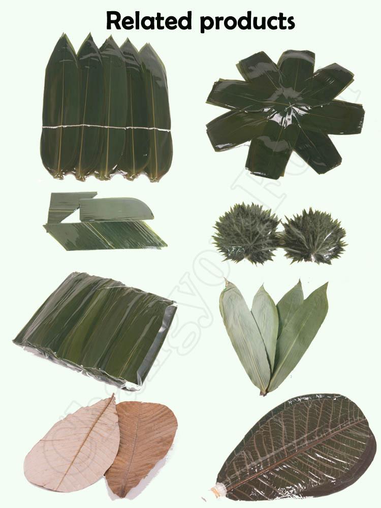 Высокое качество свежего листья бамбука для еды украшения
