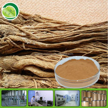 Whole Sale Angelica/Dong Quai Extract