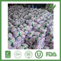 China garlic with low price