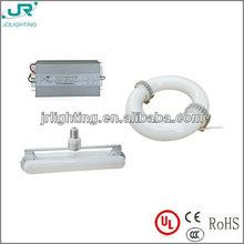 40W 60W 80W 100W 120W 150W 200W induction lamp source with UL&CE