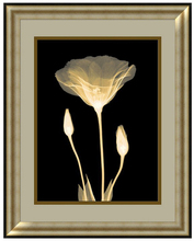 Hot Selling Framed Art Home frames wall pictures decorative