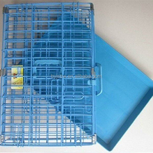 Folding Wire Dog Cages Crate With Plastic Tray