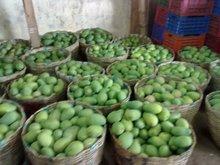 Fresh Badami Mangos