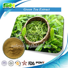 Natural 20%-98% Tea Polyphenol. Certified Organic Green Tea Extract