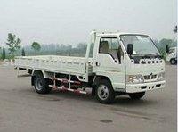 FOTON Cargo Truck