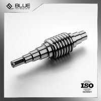 ISO9001 Certificated Factory Customized Worm Shaft