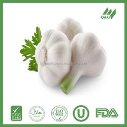 Sell 2015 fresh black garlic
