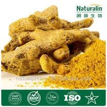 High Quality 95% Curcumin Powder