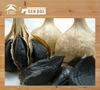 black garlic 100% nature organic garlic seed oil 100% nature organic garlic seed oil