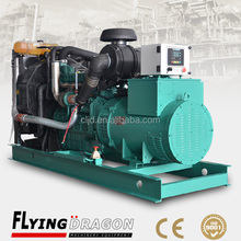 Fuel saving!!!! 200kw 250kva Volvo penta diesel power electric generator equipped with non-return fuel valve